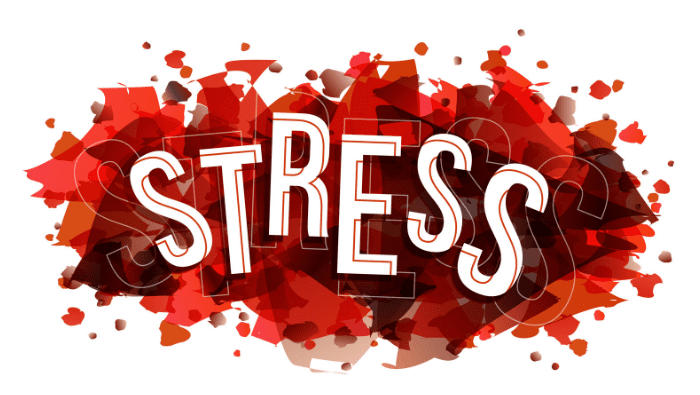Stressed? This blog could help you!
